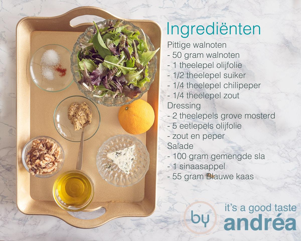 ingredienten en sinaasappel salade