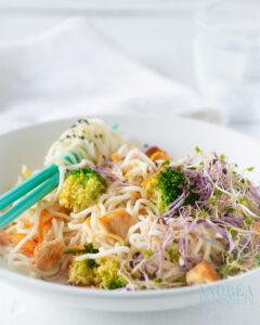 Een bord met Roerbak kip met groenten en noodles
