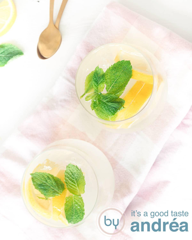 Een foto van bovenaf met twee glazen gevuld met een cocktail met citroen en gin.